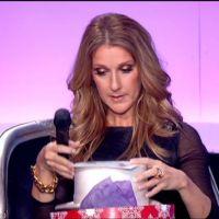 Zapping : Céline Dion en larmes sur France 2