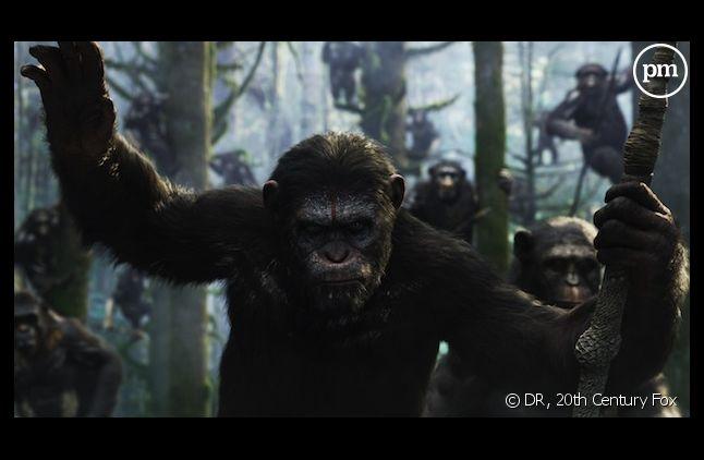 """Matt Reeves réalisera le troisième épisode de """"La Planète des singes"""""""