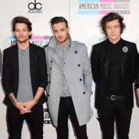 One Direction règle ses comptes sur Twitter