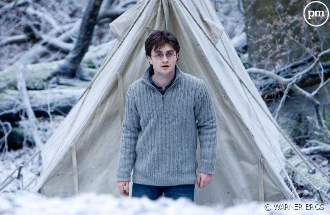 """""""Harry Potter et les reliques de la mort : partie 1"""" sur TF1"""