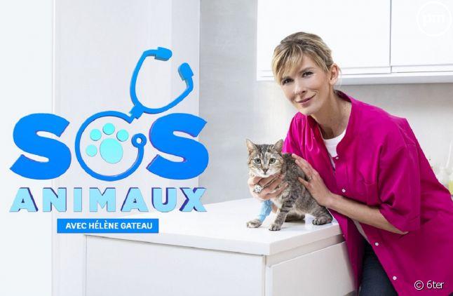 """""""SOS Animaux"""""""