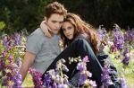"""Box-office US : """"Twilight 5"""" et """"Skyfall"""" au coude-à-coude, """"Cogan"""" descendu en flèche"""