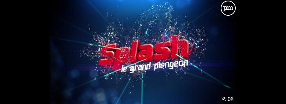 """""""Splash ! Le grand plongeon"""" arrive le 8 février sur TF1"""