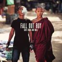 "5. Fall Out Boy - ""Save Rock and Roll"""