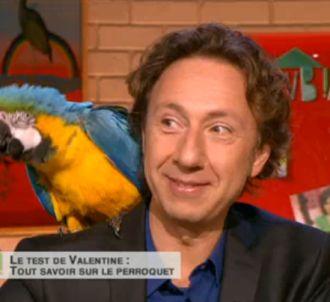 Stéphane Bern, dans 'Comment ça va bien !' sur France 2.