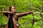 """D8 explose ses tarifs publicitaires pour """"Hunger Games"""""""