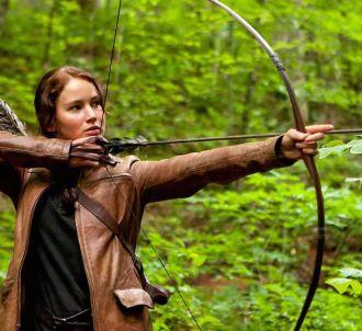 D8 va diffuser 'Hunger Games'