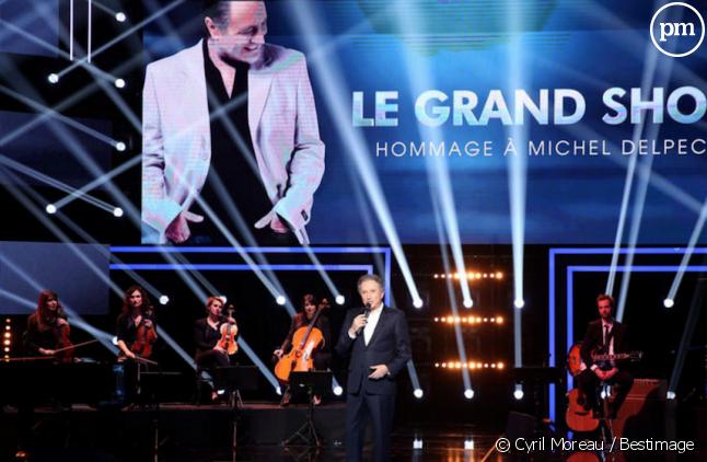 """""""Le Grand Show"""" en hommage à Michel Delpech"""
