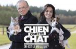 """Ce soir sur M6 : Faustine Bollaert et Mac Lesggy en duo dans """"Chien contre chat : qui est le meilleur ?"""""""