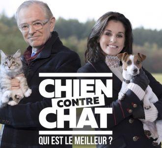 'Chien contre chat : qui est le meilleur ?'