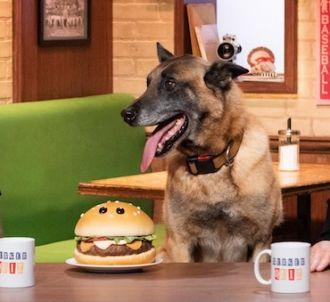 'Burger Quiz'