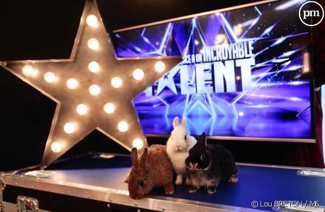 "Quel bilan d'audience pour la saison 14 de ""La France a un incroyable talent"" ?"