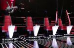"""The Voice, la plus belle voix"" : Que sont devenus les talents de la saison 1 ?"