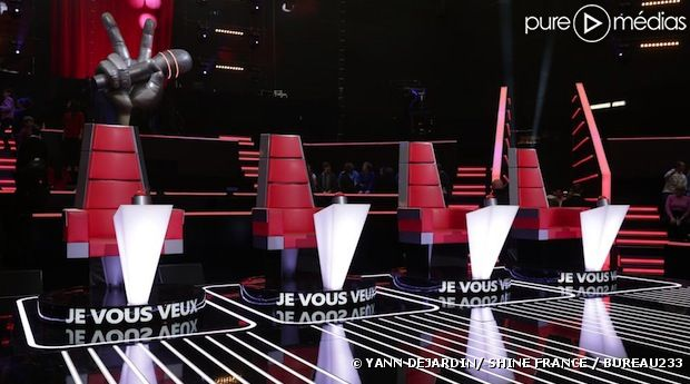 "Que sont devenus les talents de la saison 1 de ""The Voice"" ?"