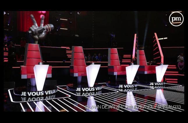 """Que sont devenus les talents de la saison 1 de """"The Voice"""" ?"""