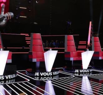Que sont devenus les talents de la saison 1 de 'The Voice' ?