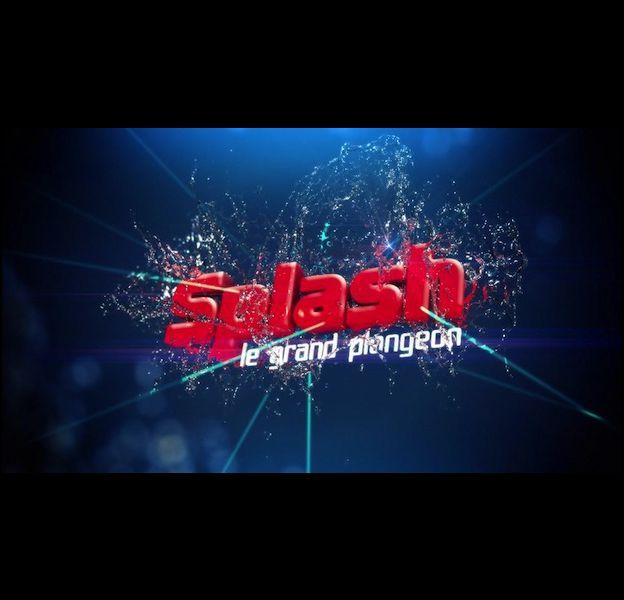 """""""Splash ! Le grand plongeon"""" débarque le 8 février sur TF1"""