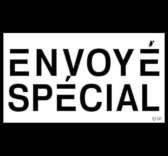 Le logo d'Envoyé Spécial
