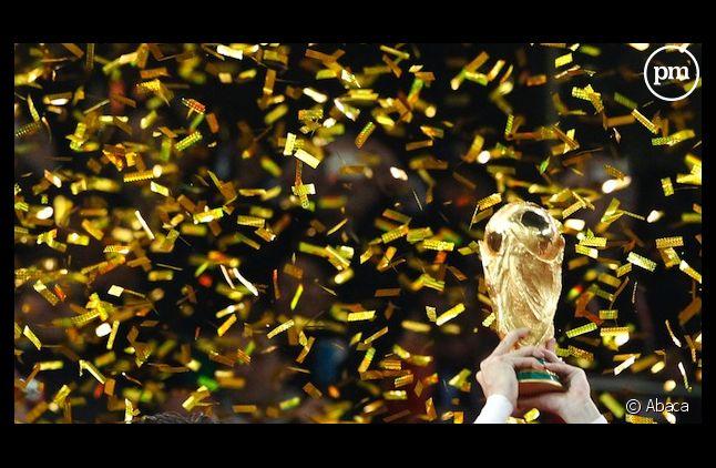 La finale de la Coupe du Monde 2014 sera diffusée sur TF1 et beIN Sports.