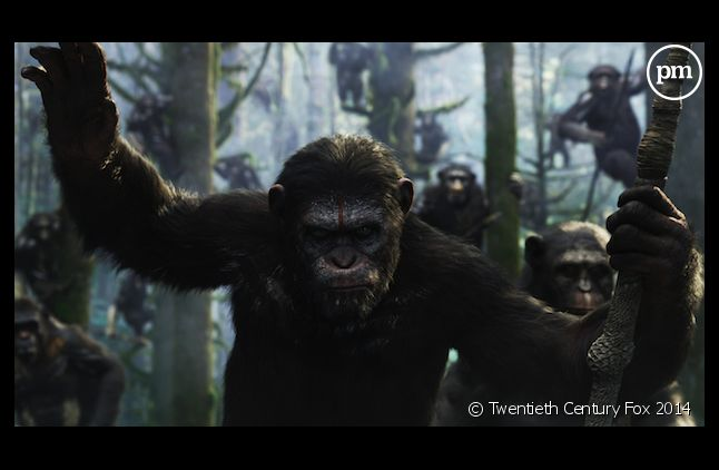 """""""La Planète des singes : l'affrontement"""" démarre en tête du box-office US"""