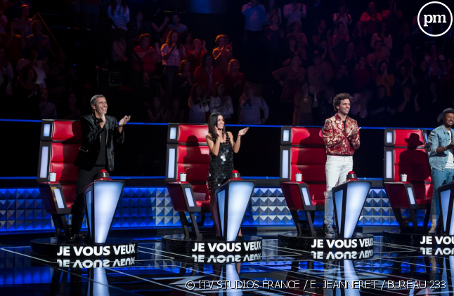 "Les coachs de la saison 8 de ""The Voice"""
