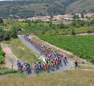 Le Tour de France est reporté
