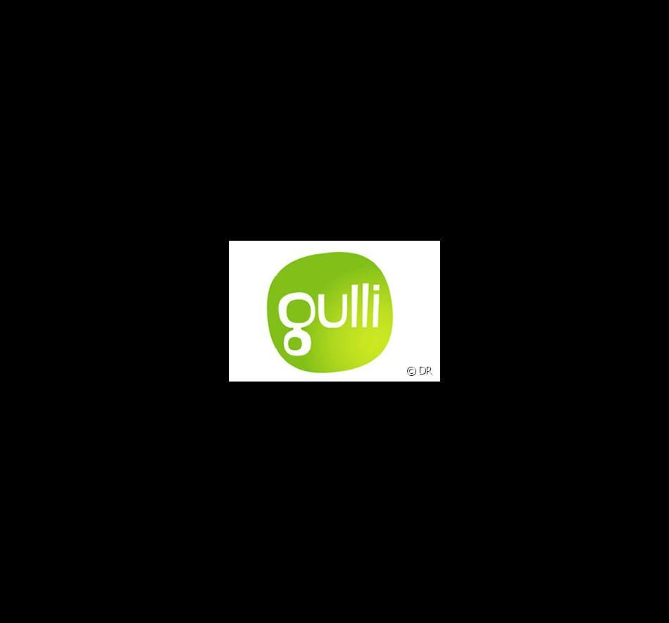 Logo De Gulli Photo Puremedias