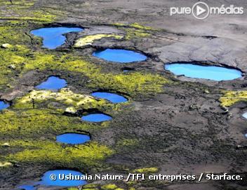 Ushuaïa nature