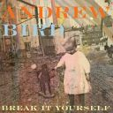 "10. Andrew Bird - ""Break It Yourself"""