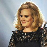 USA : Adele et Gotye en tête des ventes de disques au premier semestre 2012