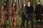 """Box-office : """"Twilight 5"""" meilleur démarrage de l'année en France"""