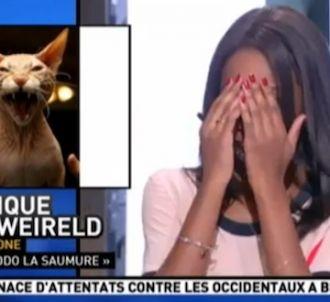 La 'Matinale' de Canal+ confond Dodo La Saumure avec un chat