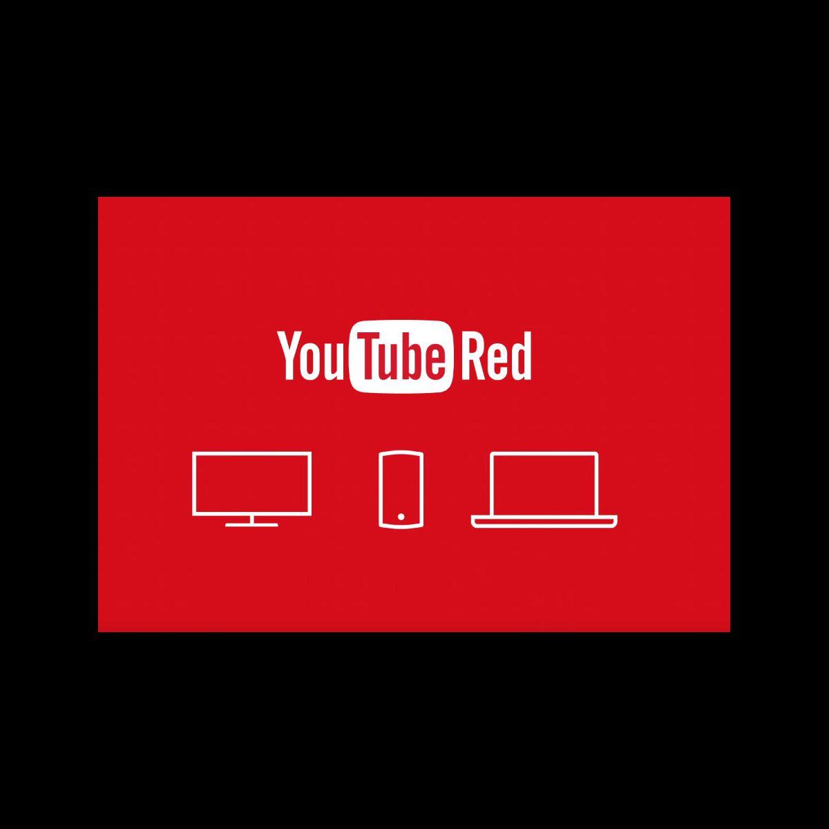 Youtube sans pub pour 10 dollars par mois puremedias - Radio accordeon sans pub ...
