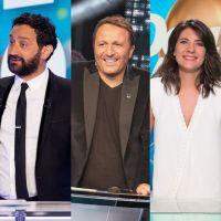 TV Notes 2016 : Arthur, TPMP, les Enfoirés, l'Eurovision... Les divertissements et jeux de la saison