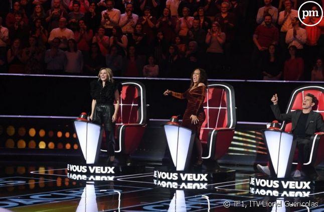 Lara Fabian, Amel Bent, Marc Lavoine et Pascal Obispo.