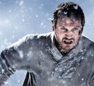 Liam Neeson dans 'Le Territoire des loups'