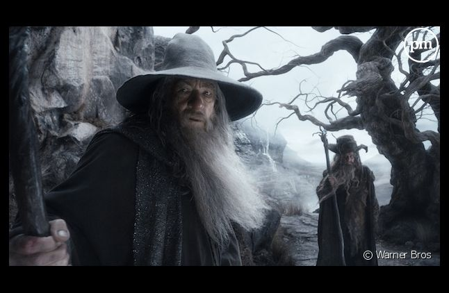 """""""Le Hobbit : la Désolation de Smaug"""""""