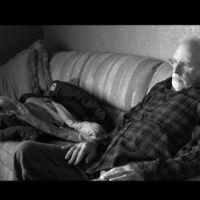 Bande-annonce : Bruce Dern part à la recherche de son million de dollars dans
