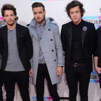 One Direction au Stade de France : le phénomène en 10 chiffres