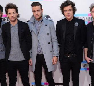 One Direction au Stade de France ce soir et demain