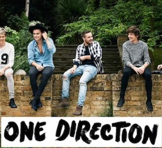 'Steal My Girl', le nouveau One Direction