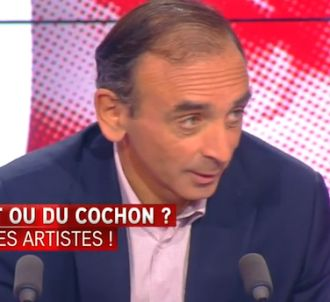 Eric Zemmour défend la destruction du plug anal