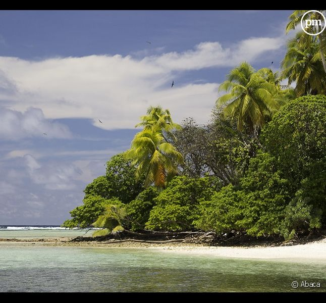"""""""The Island : Seuls au monde"""", bientôt sur M6"""