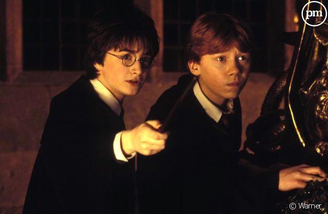 """""""Harry Potter et la Chambre des secrets"""""""