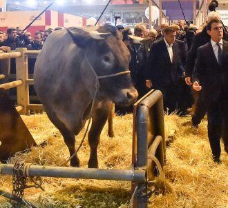 Manuel Valls a visité ce week-end le Salon de l'Agriculture