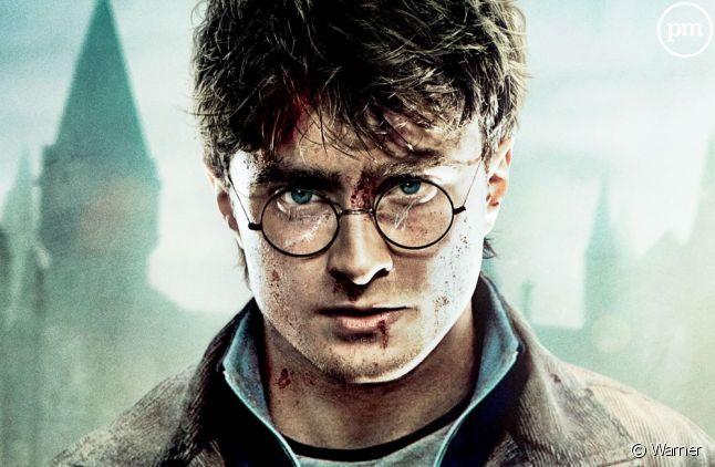 "Daniel Radcliffe dans la saga ""Harry Potter"""