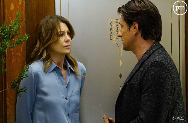 """""""Grey's Anatomy"""" saison 13"""