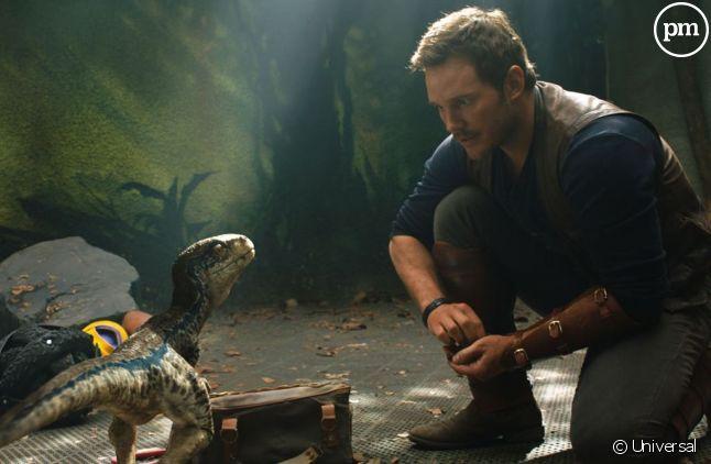 "Chris Pratt dans ""Jurassic World : Fallen Kingdom"""