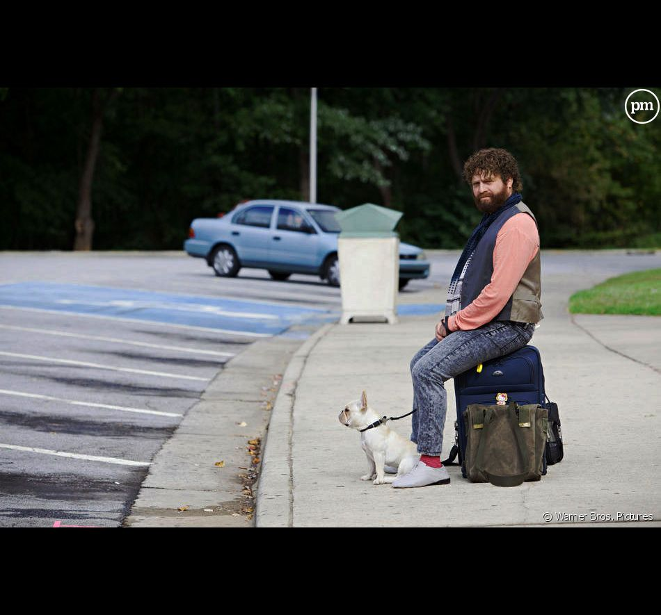 "Zach Galifianakis dans ""Date limite"""