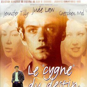 """Le """"cygne"""" Du Destin"""